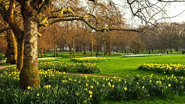 St James 180 S Park I London En Av Byens Fineste Parker